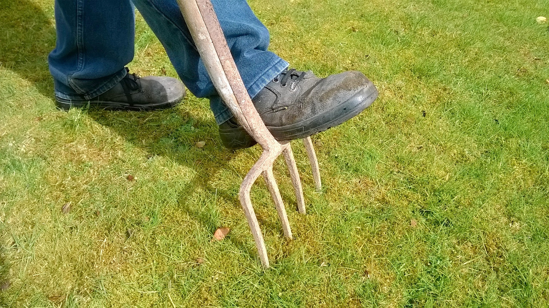 A man in boots aerating a lawn.