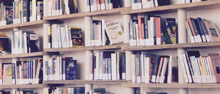 Several bookcase shelves full of books.