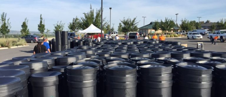 Dozens of Ivy rain barrels sitting in a parking lot for pickup.