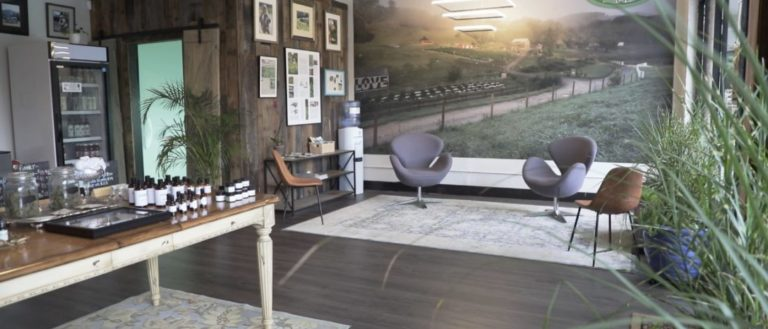 The welcoming interior of Franny's Farmacy's new store in Hendersonville.